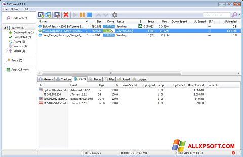 스크린 샷 BitTorrent Windows XP