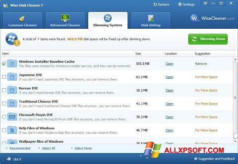스크린 샷 Wise Disk Cleaner Windows XP