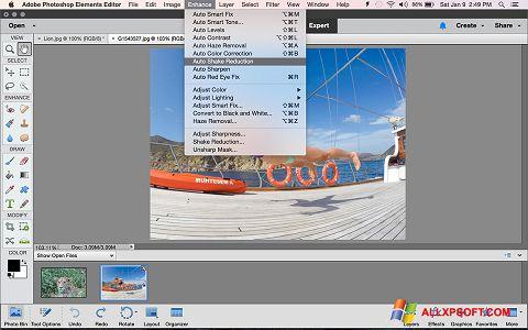 스크린 샷 Photoshop Elements Windows XP