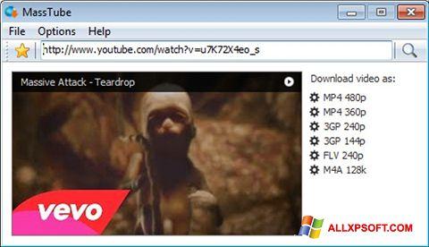 스크린 샷 MassTube Windows XP