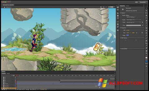 스크린 샷 Adobe Flash Professional Windows XP